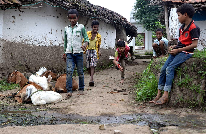 मुक्काम  : दिघौरी, मध्य प्रदेश